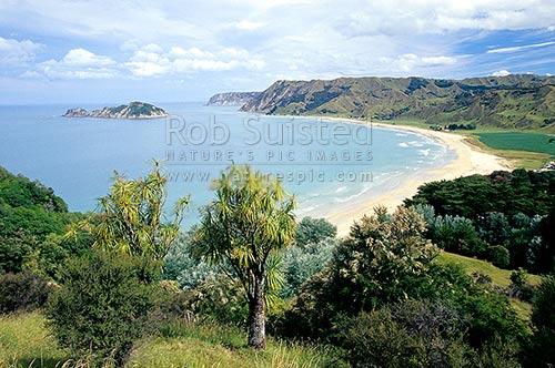 Find Local Dates in Gisborne NZ