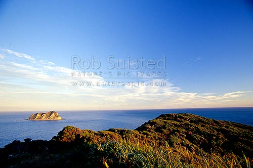East Island (Whangoakeno) at East Cape, East Cape, Gisborne District, Gisborne Region, New Zealand (NZ) stock photo.
