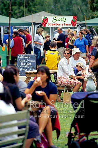 Weekly morning country market in Hastings. Vegetables, fruit, food etc, Hastings, Hastings District, Hawke's Bay Region, New Zealand (NZ) stock photo.