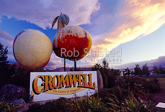 Giant fruit sculptures marking the stone fruit growing region in Central Otago, Cromwell, Central Otago District, Otago Region, New Zealand (NZ) stock photo.