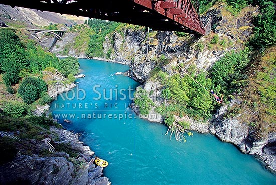 Bungy Jumping from the Kawarau Historic Bridge over the Kawarau River. 43 metre drop, Queenstown, Queenstown Lakes District, Otago Region, New Zealand (NZ) stock photo.