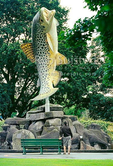 Giant brown trout statue in Gore - celebrating as the 'brown trout capital of the world', Gore ...