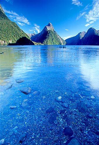 Mitre Peak (1683m) reflected in the calm waters of Milford Sound fiord, Fiordland National Park, Southland District, Southland Region, New Zealand (NZ) stock photo.