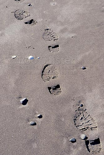 Footprints / foot steps in sand, Tangimoana, New Zealand (NZ) stock photo.