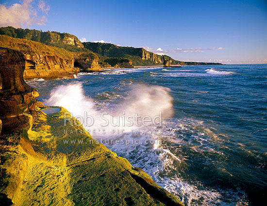 Beautiful Punakaiki / Paparoa Coastline with algae covered wave platform, Punakaiki, Buller District, West Coast Region, New Zealand (NZ) stock photo.