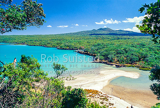Islington Bay, Rangitoto Island. Hauraki Gulf. Deserted white sand beach, Rangitoto Island, Auckland City District, Auckland Region, New Zealand (NZ) stock photo.