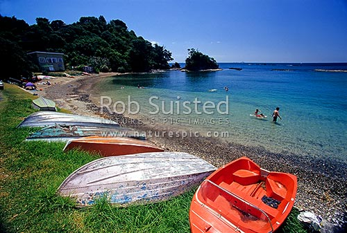 People swimming row boats and baches at enclosure bay - Mission bay swimming pool auckland ...