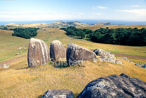 Rock formations above the historic wwii coastal defense for Landscaping rocks auckland