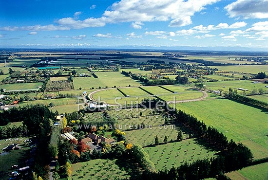 Aerial view of farmland / agricultural land on the Canterbury Plains., Darfield, Selwyn District, Canterbury Region, New Zealand (NZ) stock photo.