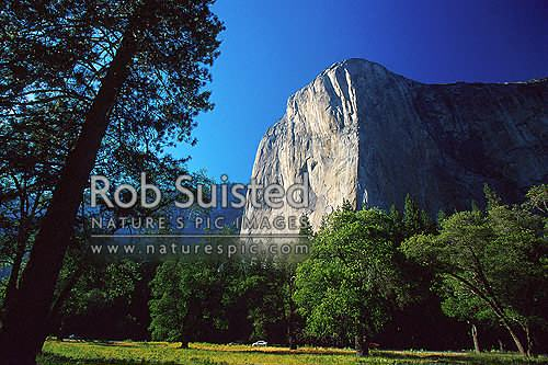 Looking up the 3593 foot face of the famous El Capitan. Yosemite Valley, Yosemite National Park, USA, California District, California Region, United States of America stock photo.