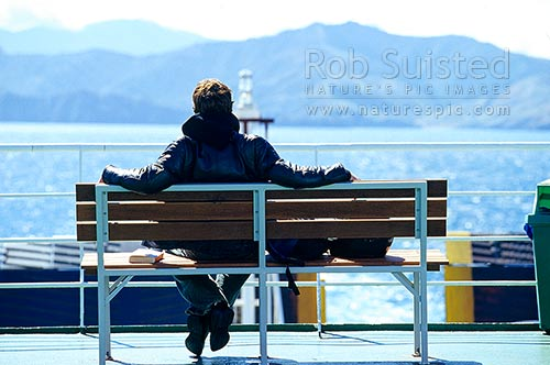 Passenger enjoying the view on the Interisland ferry, Marlborough Sounds, Marlborough Sounds, Marlborough District, Marlborough Region, New Zealand (NZ) stock photo.