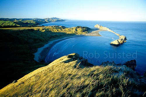 Looking north over Castlepoint lighthouse, reef and inlet from Castle Rock (162m) in evening, Castlepoint, Masterton District, Wellington Region, New Zealand (NZ) stock photo.