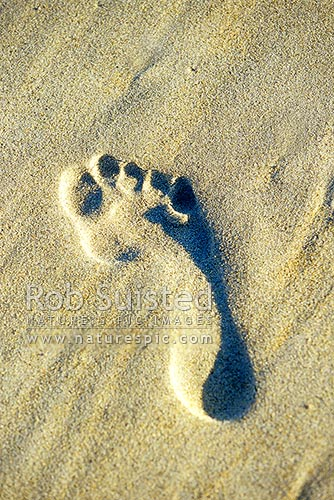 Human bare footprint on sandy beach, Otago Peninsula, Dunedin City District, Otago Region, New Zealand (NZ) stock photo.