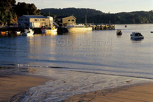 Fisherman's Wharf and fishing boats in Halfmoon Bay (Oban), early morning, Halfmoon Bay, Stewart Island District, Southland Region, New Zealand (NZ) stock photo.
