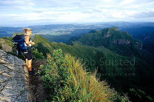 Woman tramper on the summit of The Pinnacles (788m), above Pinnacles Hut. Kauaeranga Kauri Trail, Kauaeranga Valley, Thames-Coromandel District, Waikato Region, New Zealand (NZ) stock photo.
