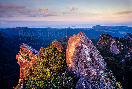 View from the summit of The Pinnacles (759m), above Pinnacles Hut. Coromandel Ranges. Looking east, Kauaeranga Valley, Thames-Coromandel District, Waikato Region, New Zealand (NZ) stock photo.
