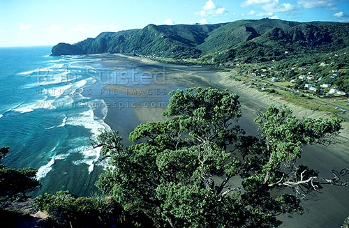 Looking north from Lion rock, Piha beach, Piha beach, Waitakere City District, Auckland Region, New Zealand (NZ) stock photo.