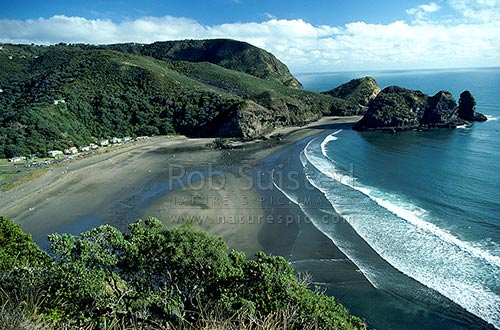 Looking South From Lion Rock Piha