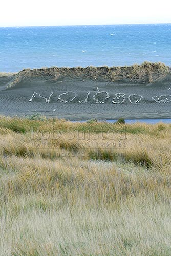 Anti 1080 poison protest sculpture on beach, Ngawi, New Zealand (NZ) stock photo.