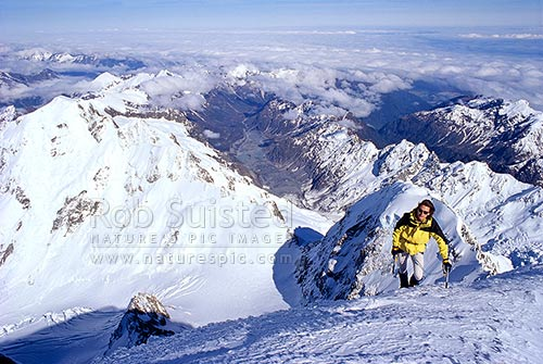 Phil Suisted on the summit of Mount (Mt) Cook (3754m). La Perouse (L) and Cook River (Westland) behind, Aoraki / Mount Cook National Park, MacKenzie District, Canterbury Region, New Zealand (NZ) stock photo.
