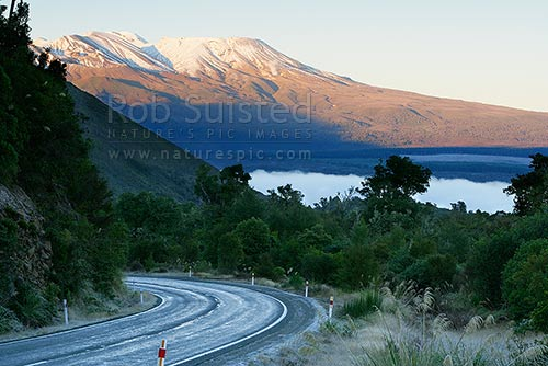 Vehicle on the Pihanga Saddle Road (State highway 47) between Tokaanu and National Park. Early morning, winter frosty road and morning sun. Mt Tongariro above, Tokaanu, Taupo District, Waikato Region, New Zealand (NZ) stock photo.
