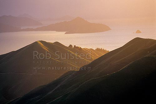 Looking over French Pass towards D'Urville Island and D'Urville Peninsula in Admiralty Bay, Marlborough Sounds. Morning light, French Pass, Marlborough District, Marlborough Region, New Zealand (NZ) stock photo.