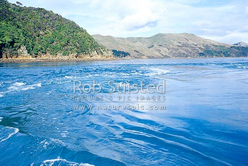 Very strong currents and whirlpools passing through French Pass into Current Basin. Marlborough Sounds, French Pass, Marlborough District, Marlborough Region, New Zealand (NZ) stock photo.