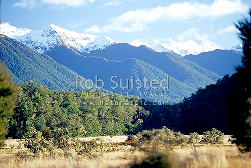 Looking down the Maruia River valley towards the winter snow-covered Victoria Range, Springs Junction, Buller District, West Coast Region, New Zealand (NZ) stock photo.
