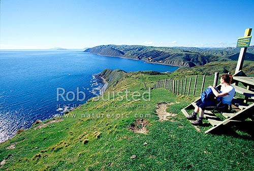 Walker on the Makara gun emplacements (Fort Opau) walk above Wharehou Bay, looking towards Pipinui Point, and Mana Island and Kapiti Island, Makara Beach, Wellington City District, Wellington Region, New Zealand (NZ) stock photo.