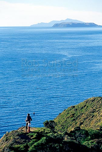 Father and daughter walking the Makara gun emplacements walk. Mana Island and Kapiti Island behind, Makara Beach, Wellington City District, Wellington Region, New Zealand (NZ) stock photo.