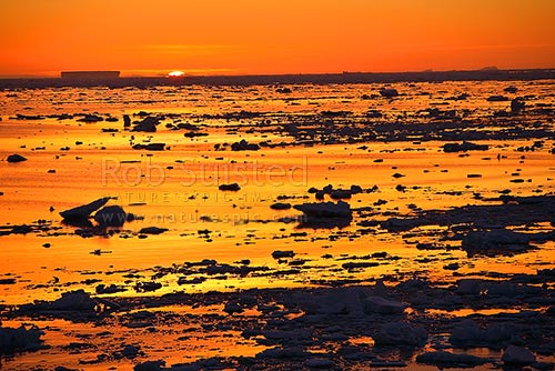 Antarctic sunrise - sun rising over pack ice and tabular icebergs. 66 degrees South. 66º 2' S 141º34' E, Open southern ocean, Southern Ocean, Antarctica District, Antarctica Region, Antarctica stock photo.