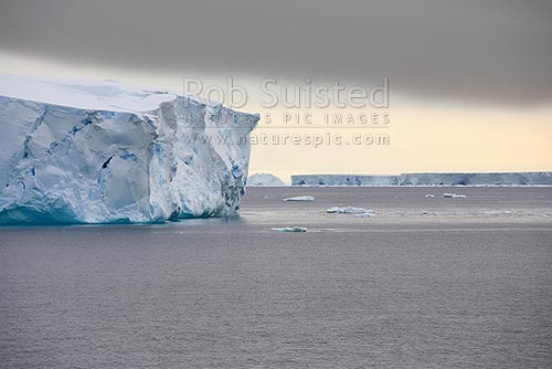 Huge tabular icebergs in the southern ocean. Antarctic ice cap rising into distance. Commonwealth Bay, Commonwealth Bay, George V Land, Antarctica District, Antarctica Region, Antarctica stock photo.
