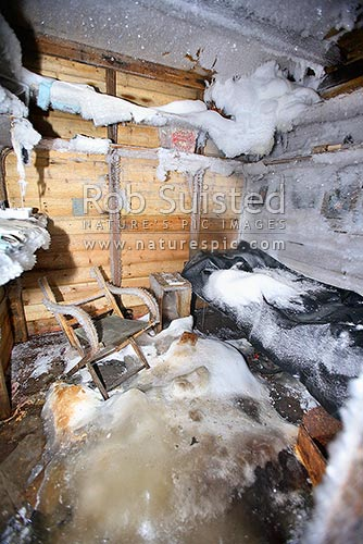 Inside the Historic 1912-14 Mawson's hut, Cape Denison. Douglas Mawson's room. Bunk and chair, Commonwealth Bay, George V Land, Antarctica District, Antarctica Region, Antarctica stock photo.
