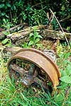 Old bogey wheels in bush