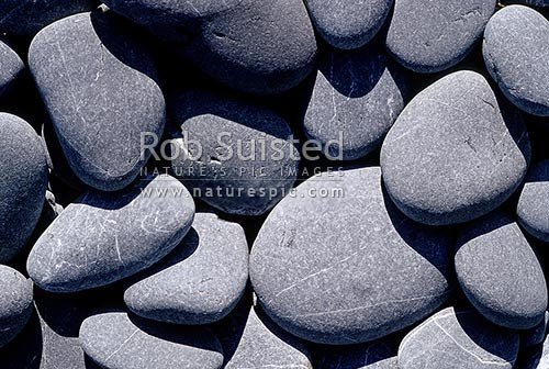 Greywacke stone. Rock texture. Beach stones. Beach pebbles ...