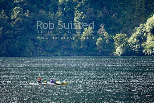 Sea kayaking in Doubtful Sound. Sea kayakers. Double Sea Kayak, Fiordland, Southland District, Southland Region, New Zealand (NZ) stock photo.