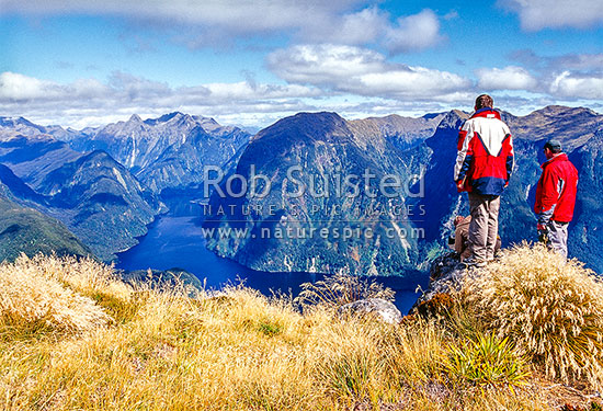 Tourists, people filming the view above Doubtful Sound. Hall Arm centre. Fiordland National Park, Fiordland National Park, Southland District, Southland Region, New Zealand (NZ) stock photo.