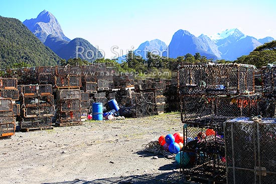NZ Rock lobster (crayfish) pots stored at Deepwater Basin, Milford Sound, Fiordland National Park, Southland District, Southland Region, New Zealand (NZ) stock photo.