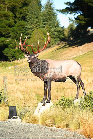 Statue of a Wapiti Bull (Elk) recognising the historical gift of Wapiti to NZ, that now live in Fiordland National Park, Te Anau, Southland District, Southland Region, New Zealand (NZ) stock photo.