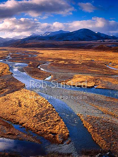 Looking up the braided riverbed of the Clarence River valley, St James Station, St James Station, Hurunui District, Canterbury Region, New Zealand (NZ) stock photo.