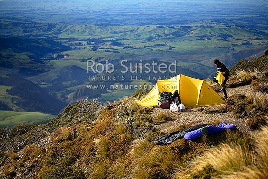 Tr&er packing up tr&ing equipment next to alpine tent c&. Ruahine Ranges. Hiking Ruahine Forest Park New Zealand (NZ) Stock Photo & Tramper packing up tramping equipment next to alpine tent camp ...