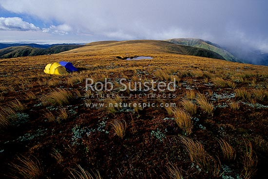 Tent camping on the Main Range tussock tops with clearing storm and tarns, near Tupari (1526masl). Tramping, Ruahine Forest Park, Rangitikei District, Manawatu-Wanganui Region, New Zealand (NZ) stock photo.