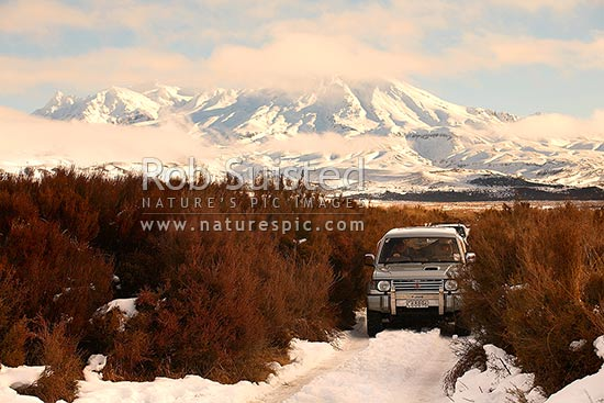 Four wheel driving in snow with Mount (Mt) Ruapehu behind (2797m asl). Rangipo Desert, four wheel drive, 4WD, 4x4, Rangipo, Taupo District, Waikato Region, New Zealand (NZ) stock photo.