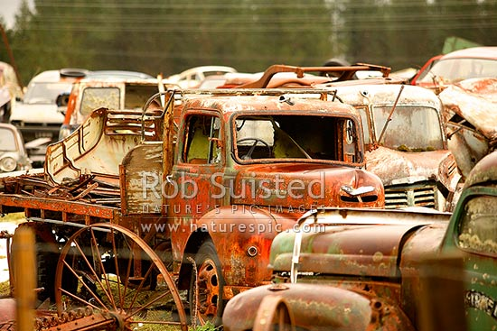 Old cars, trucks and vehicle bodies at the famous 'Smash Palace' wreckers and car museum, Horopito, Ruapehu District, Manawatu-Wanganui Region, New Zealand (NZ) stock photo.