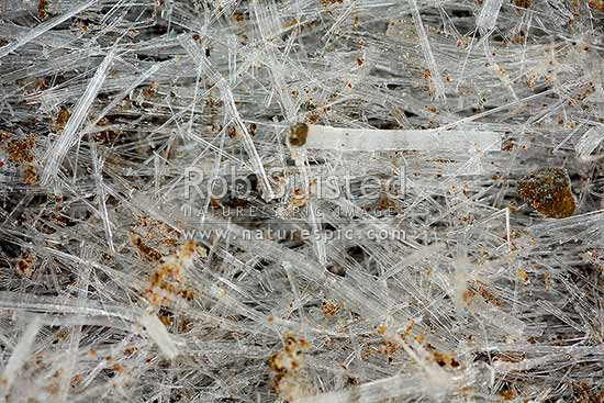Scattered frost heaving ice crystals during heavy frost. Texture, National Park, New Zealand (NZ) stock photo.
