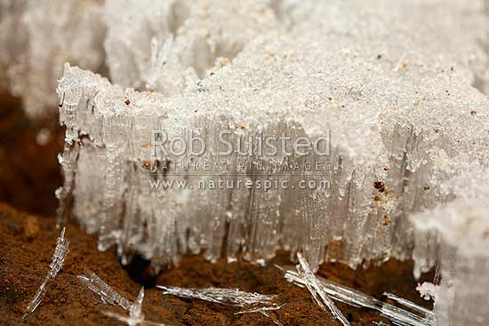 Frost heave ice crystals lifting out of soil during heavy frost, National Park, New Zealand (NZ) stock photo.