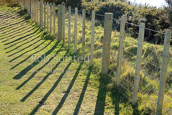 No 8 Fencing Wire And 7 Wire Farm Fence Post And Battens