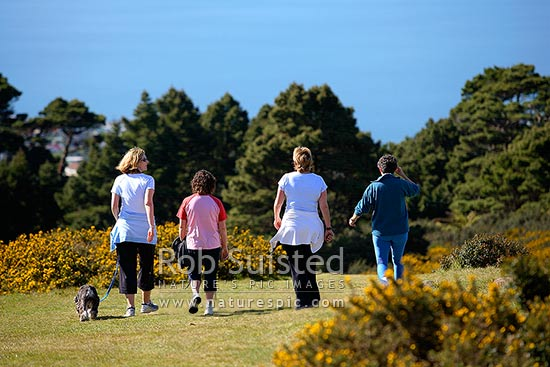 Four woman exercising with dog, walking across grassy farmland above Wellington Harbour, Wellington, Wellington City District, Wellington Region, New Zealand (NZ) stock photo.
