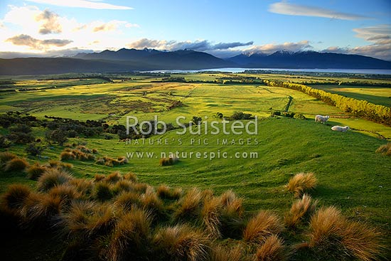 View of Lake Te Anau, farmland and Fiordland National Park from above Te Anau township, Te Anau, Southland District, Southland Region, New Zealand (NZ) stock photo.