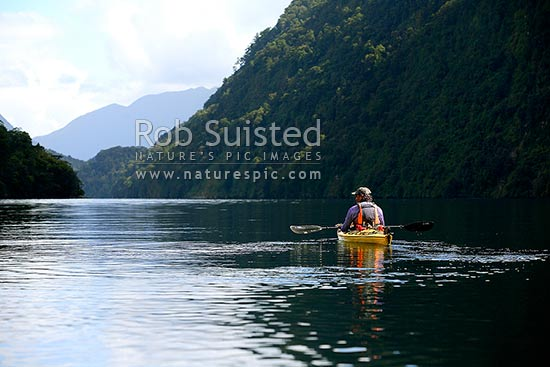 Wilderness sea kayaking in a tranquil, Doubtful Sd, Fiordland National Park, Doubtful Sound, Fiordland, Southland District, Southland Region, New Zealand (NZ) stock photo.